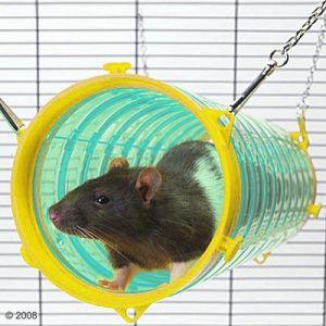 Présentation de la cage de mes puces :) 125199_savic_gianttubeneu_1
