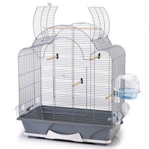 vogelk fig melodie 50 g nstig bei zooplus. Black Bedroom Furniture Sets. Home Design Ideas
