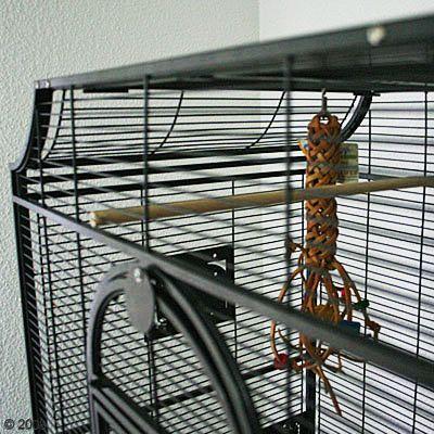 vogelk fig montana madeira i g nstig bei zooplus. Black Bedroom Furniture Sets. Home Design Ideas