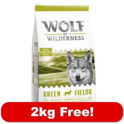 Best Dry Dog Food For Rottweilers Uk