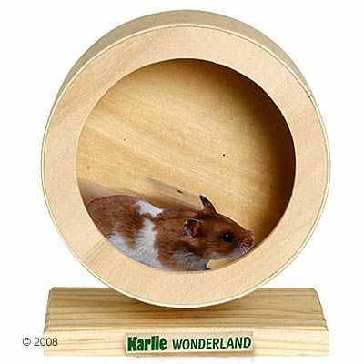 Wonderland Wooden Exercise Wheel