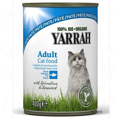 Best Tasting Wet Cat Food