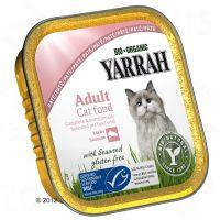 Yarrah -märkäruoka kissoille