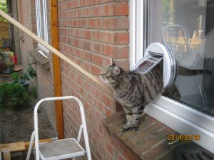cat mate cat flap fitting instructions