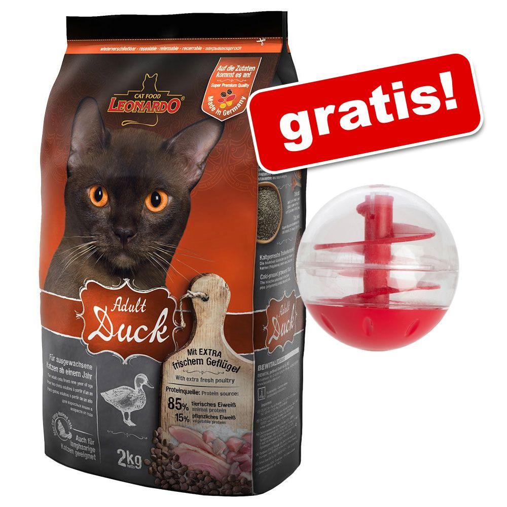 Foto 1,8/2 kg Leonardo + Snackball gratis! - Adult Pollame Grainfree (1,8 kg)