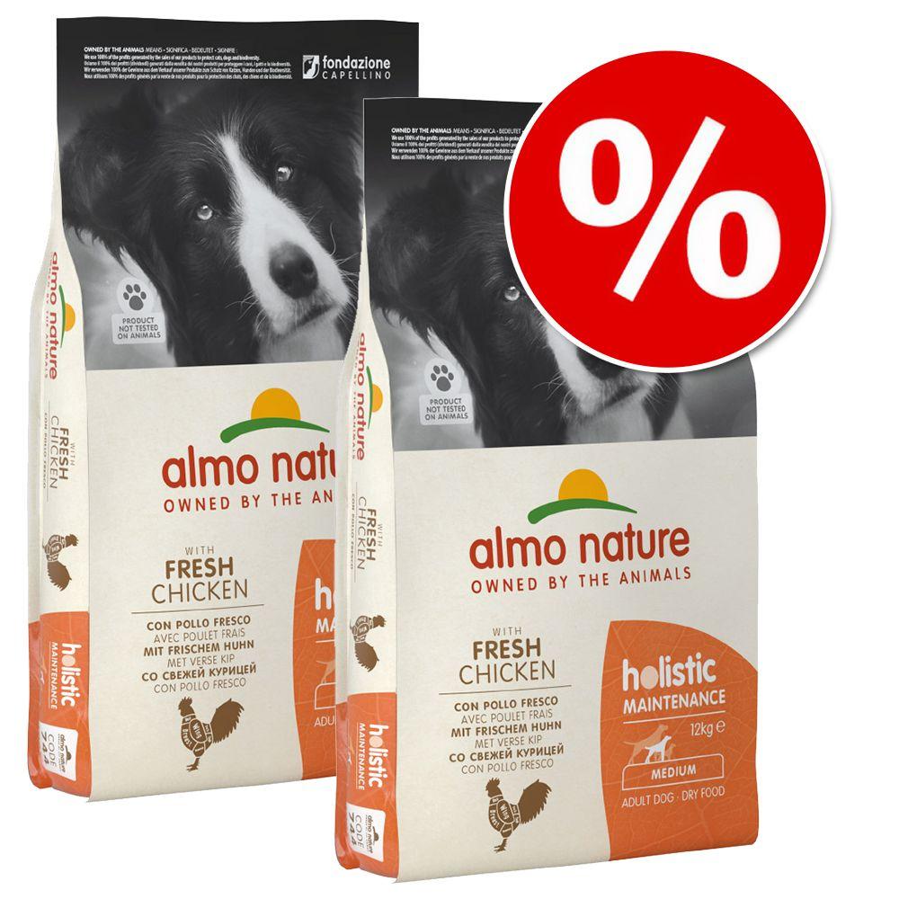 Ekonomipack: 2 / 3 påsar Almo Holistic Nature hundfoder - Adult Large Nötkött & ris (2 x 12 kg)