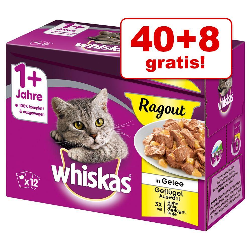 40 + 8 på köpet! 48 x 85 g Whiskas Ragout - 1+ Ragout Fjäderfäurval i gelé 85 g