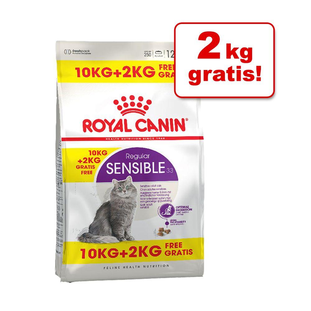 10 + 2 kg på köpet! 12 kg Royal Canin kattfoder Maine Coon Adult (10 kg + 2 kg på köpet!)