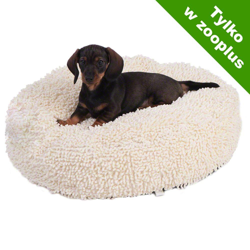 Poduszka dla psa Cream -