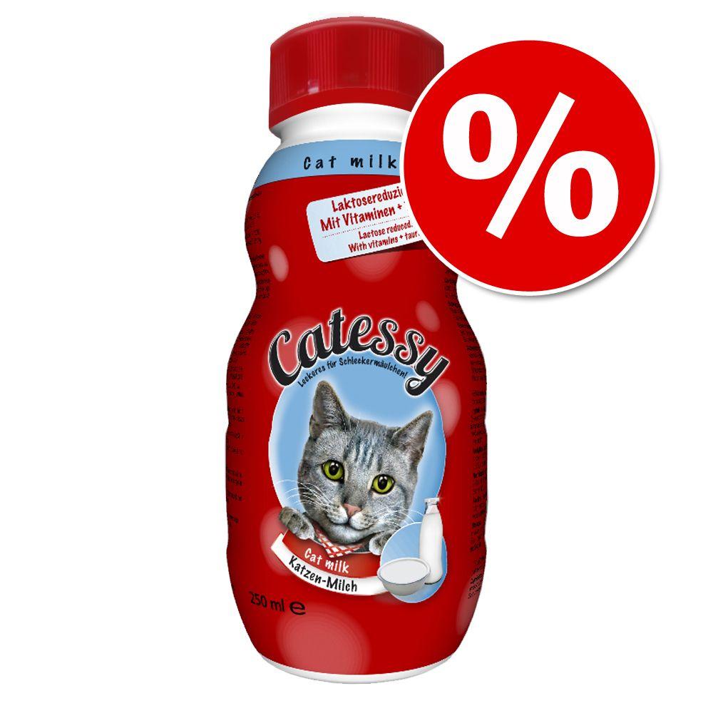 Catessy Katzenmilch 12 x 250 ml zum Sparpreis -...
