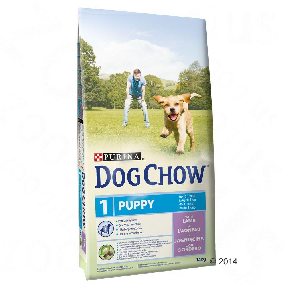 Purina Dog Chow Puppy Lamb & Rice, jagnięcina i ryż - 14 kg + 2,5 kg gratis!