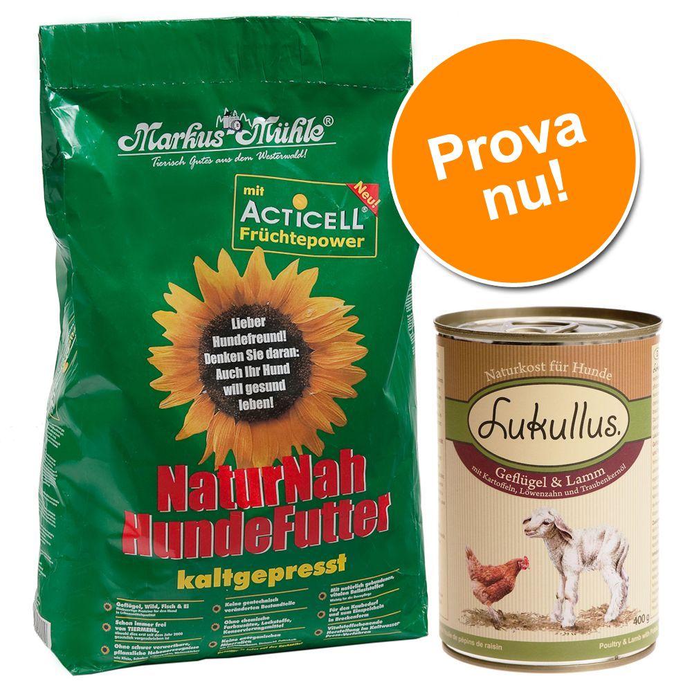 Provpack: 5 kg Markus-Mühle + 6 x 400 g Lukullus - Fågel & lamm