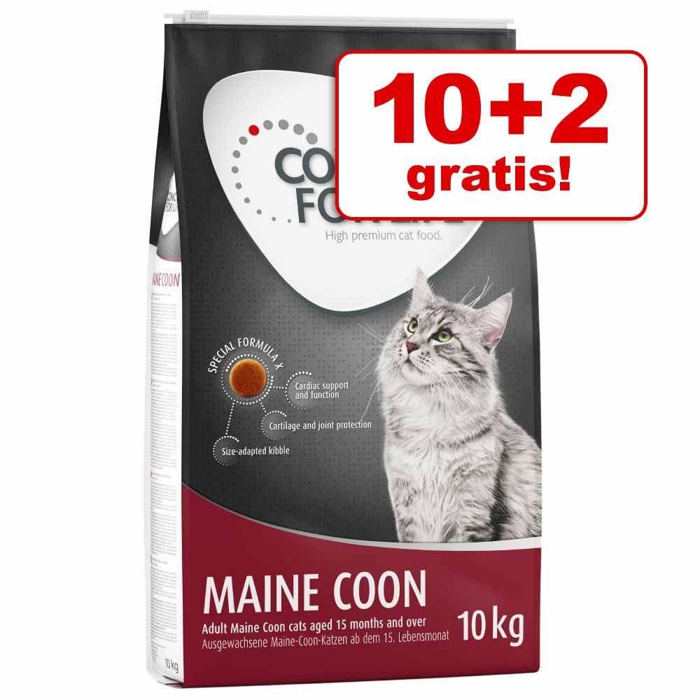 10 + 2 kg gratis! Concept for Life karma dla kota, 12 kg - All Cats 10+