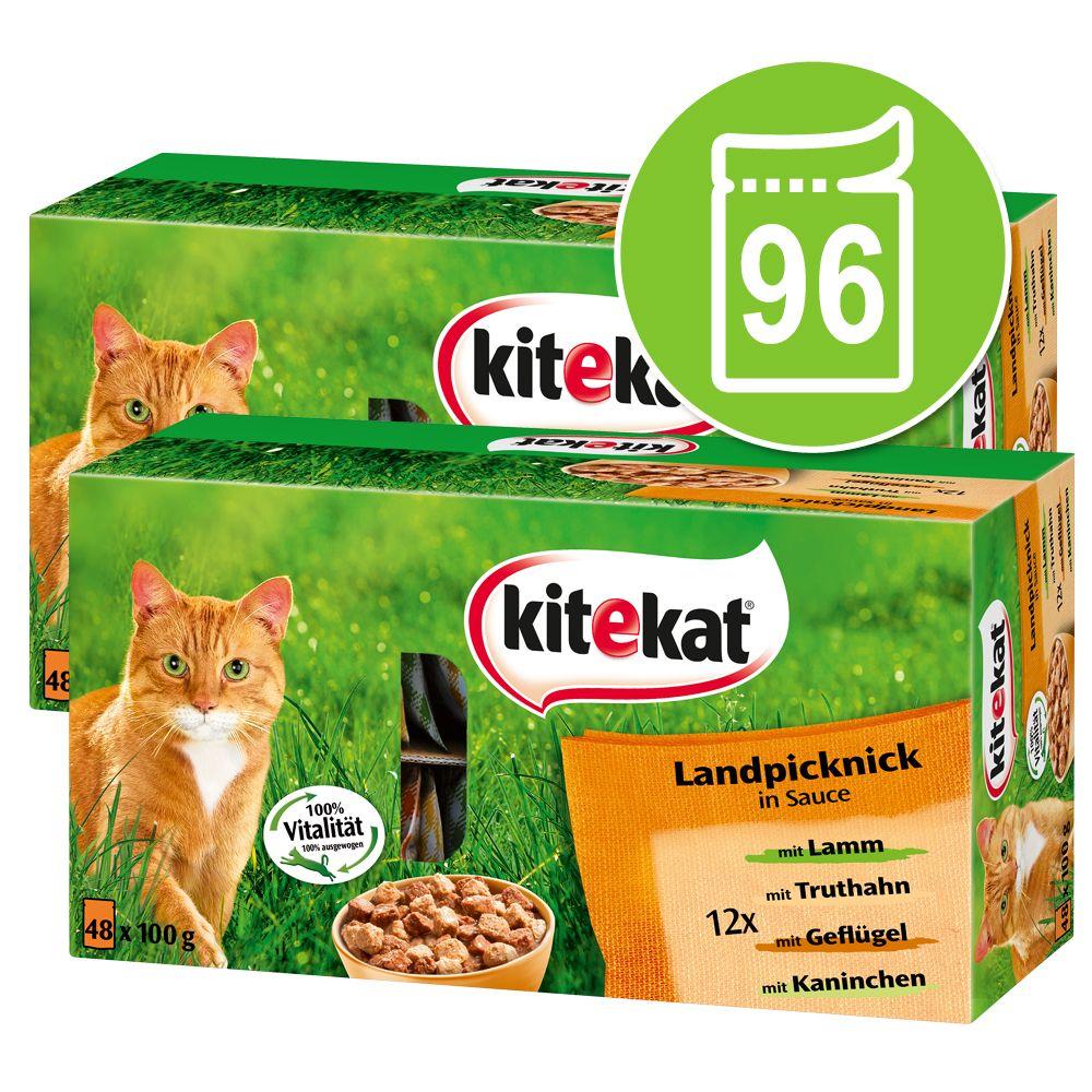 Ekonomipack: Kitekat portionspåsar 96 x 100 g - Blandpack: Brokig mångfald & picknick i sås