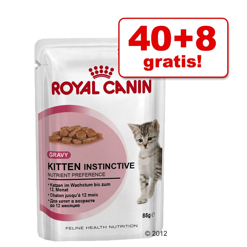 40 + 8 gratis! Royal Cani