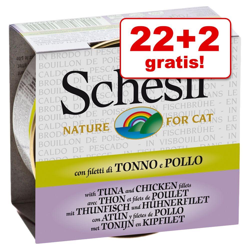 Image of 22 + 2 gratis! 24 x 70 g Schesir in Brodo di cottura - Filetti di Pollo con Gamberetti