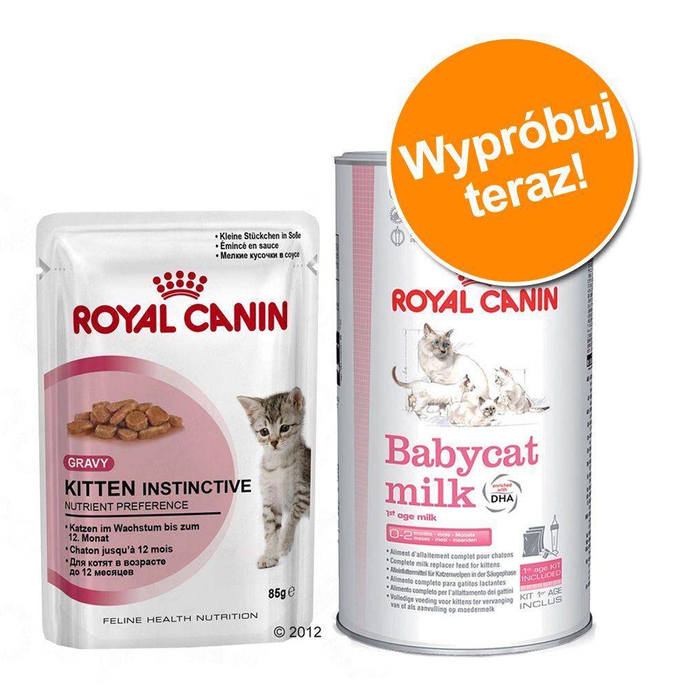 Pakiet startowy Royal Can