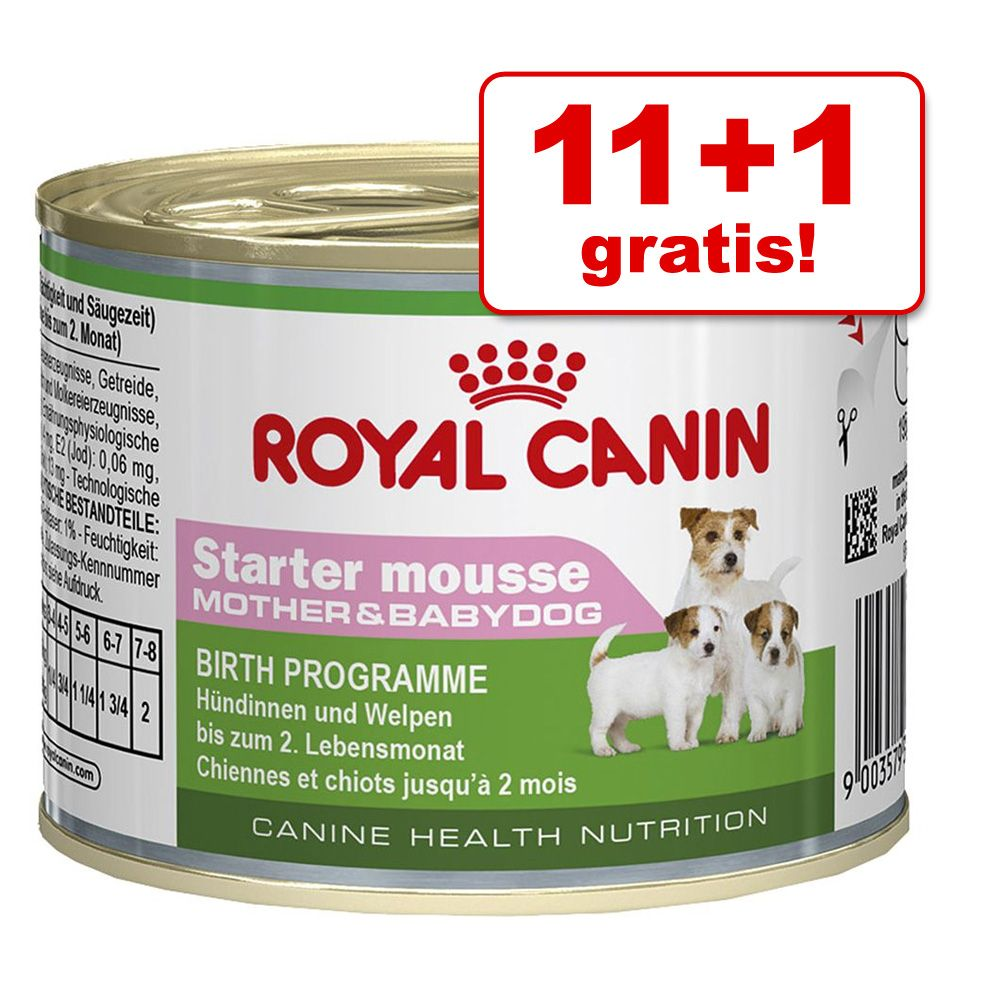 11 + 1 gratis! Royal Cani