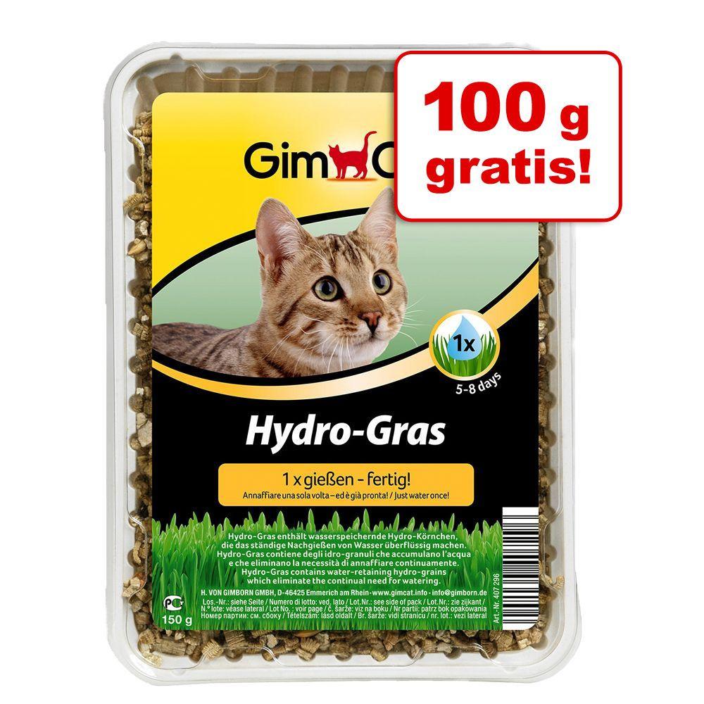 200 + 100 g gratis! GimCat Hydro-trawa, 2 x 150 g - 2 x 150 g