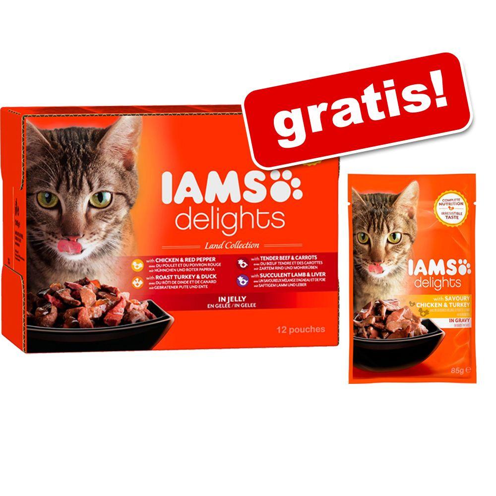 Pakiet mieszany Iams Delights Adult, 24 x 85 g + IAMS Adult, kurczak i indyk, 2 x 85 gratis! - Pakiet mieszany w galarecie