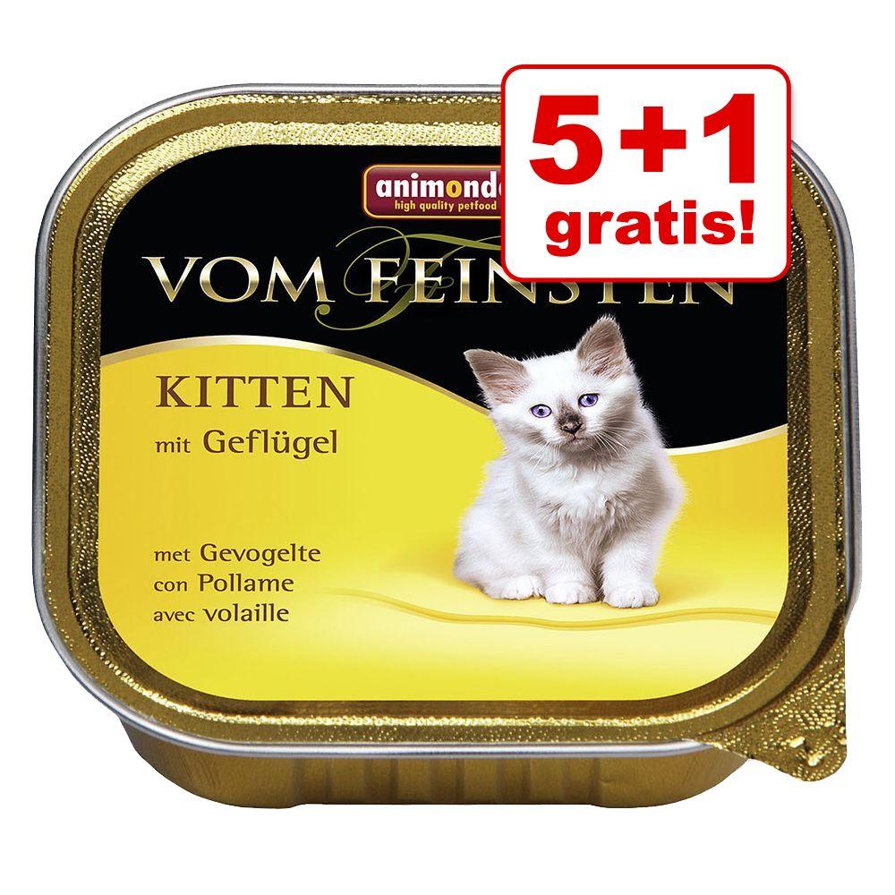 5 + 1 gratis! Animonda vom Feinsten Kitten, 6 x 100 g - Z drobiem