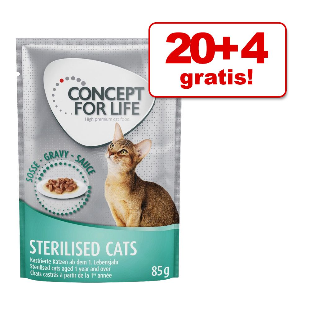 20 + 4 gratis! Concept for Life 24 x 85 g - Beauty v omaki
