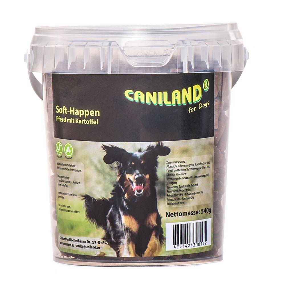 Image of Karlie Doggy Brain Train 2in1 Gioco per cani - 540 g Caniland Soft al cavallo