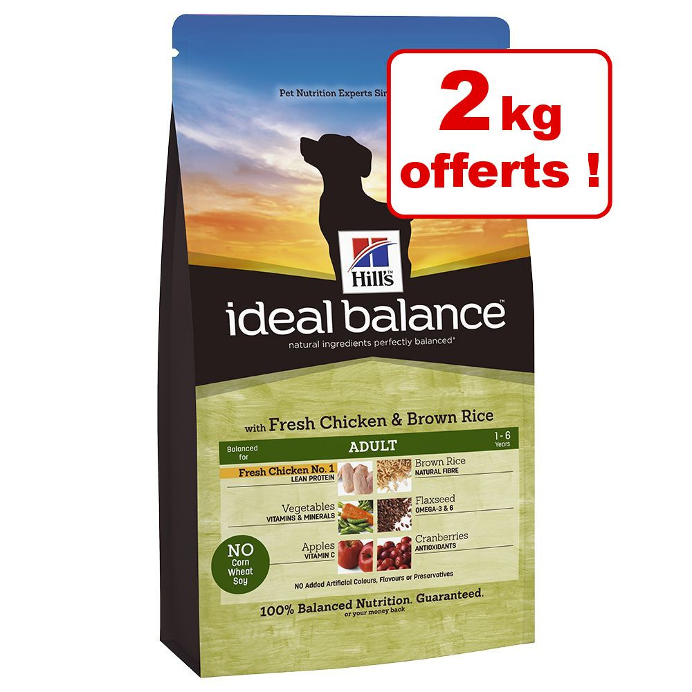 Chien Croquettes Hill´s Ideal Balance