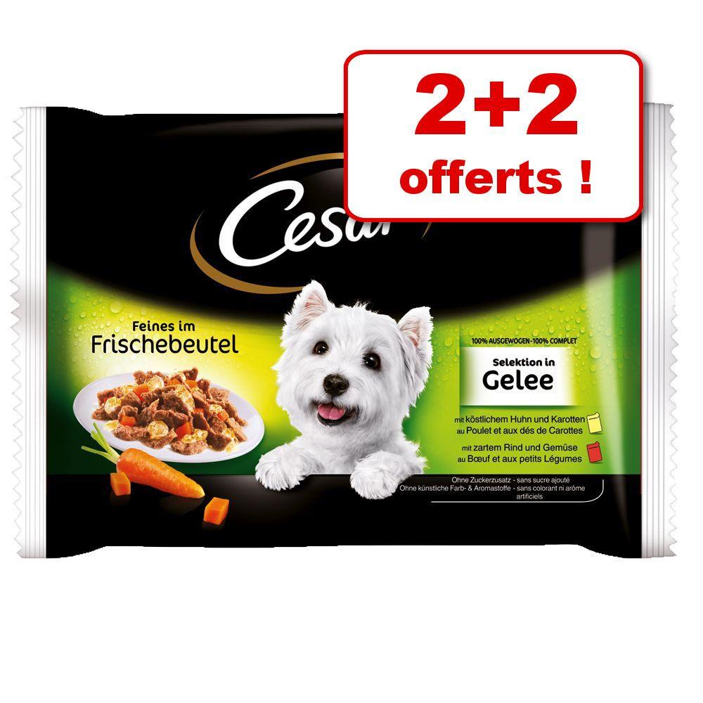 Sachets fraîcheur Cesar 2 x 100 g + 2 sachets offerts ! - Sélection en sauce