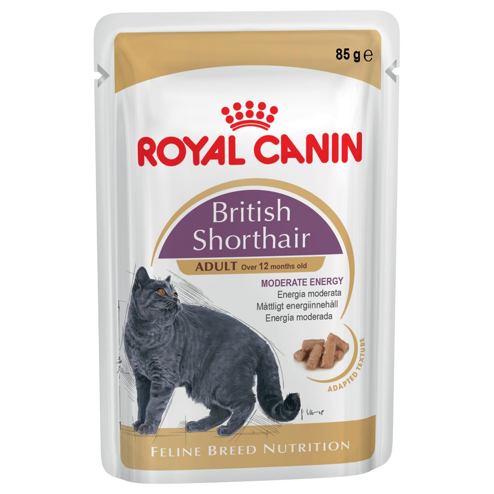Royal Canin Breed British Shorthair - 6 x 85g