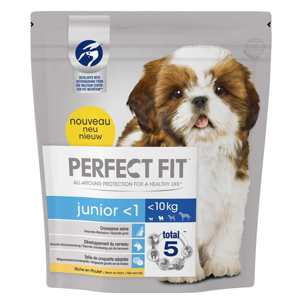 Perfect Fit Junior Small Dogs (