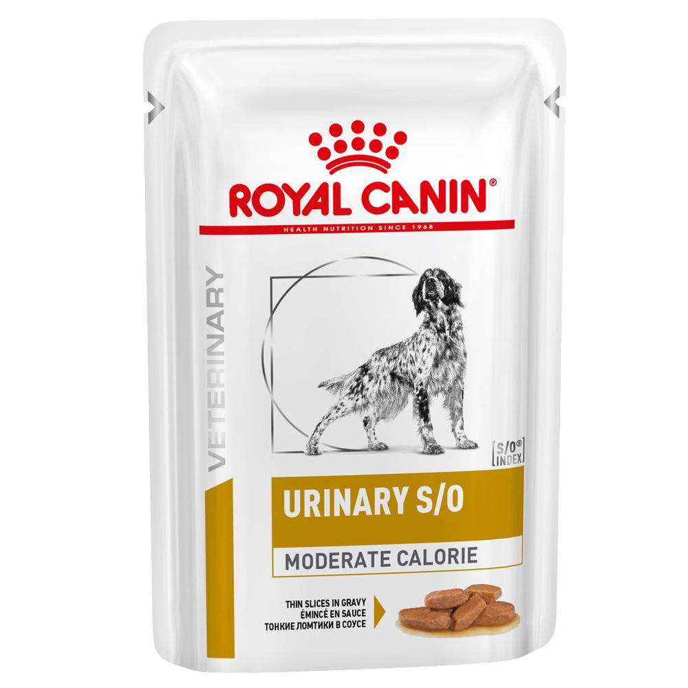 Moderate Calories Urinary S/O Dog Veterinary Diet Royal Canin Wet Dog Food