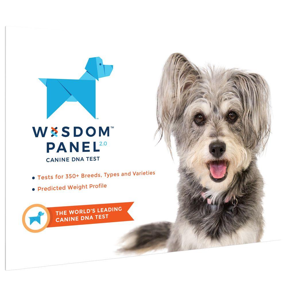 Wisdom Panel 2.0 - Canine DNA Test