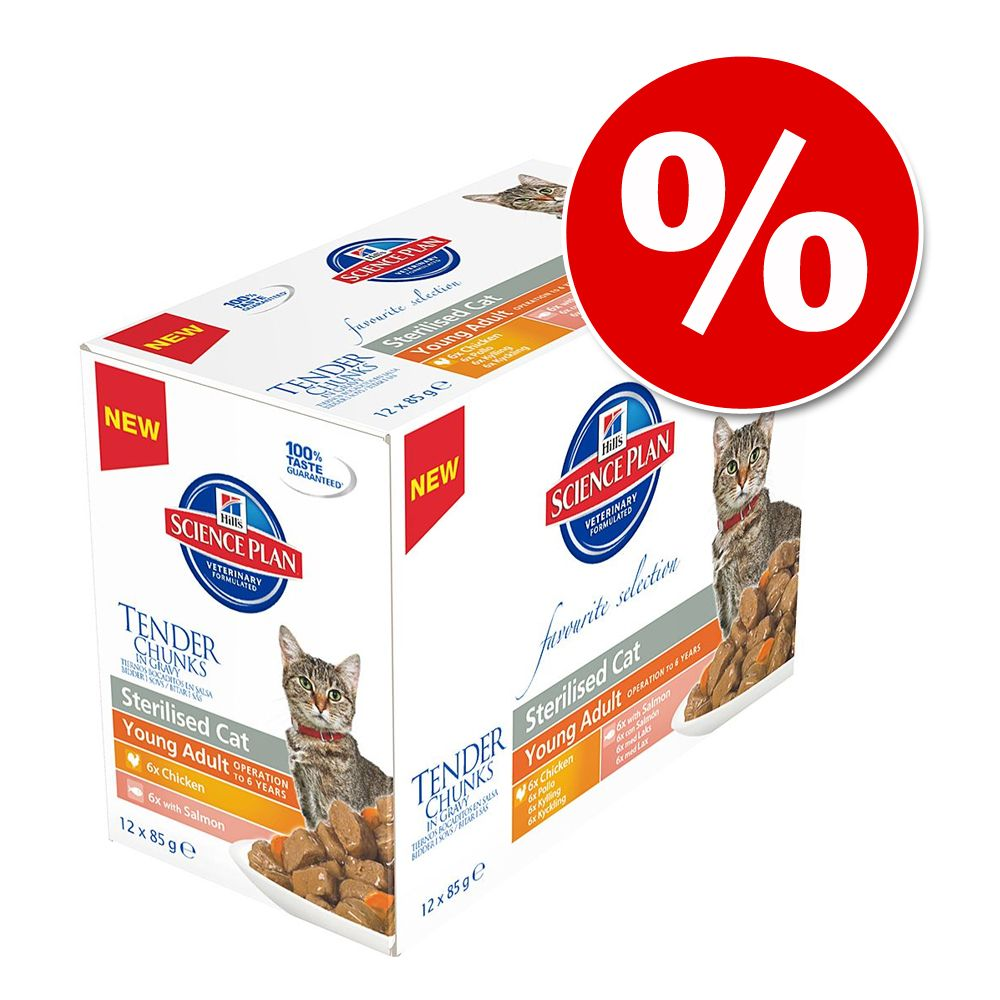 Hill's Feline, 24 x 85 g w super cenie! - Young Adult Sterilised, kurczak i łosoś