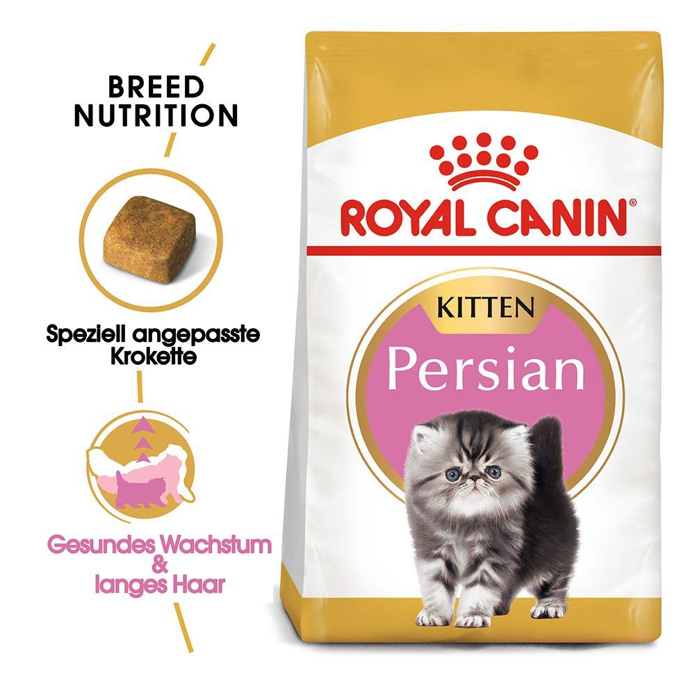 4kg Persian Kitten Royal Canin - Killingefoder