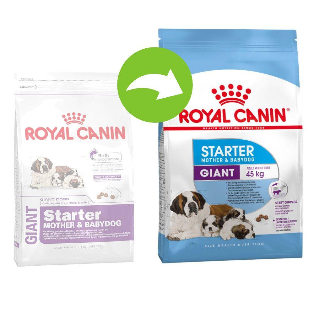 Image of Royal Canin Giant Starter Mother & Babydog - Set %: 2 x 15 kg
