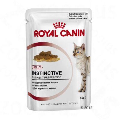 royal-canin-instinctive-in-gelei-kattenvoer-24-x-85-g