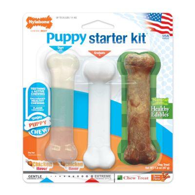 Nylabone Puppy Starter Kit - pieni koko