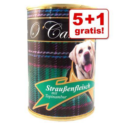 5 + 1 på köpet! 6 x 400 g O'Canis våtfoder - Hästkött, linfrön & grönsaker