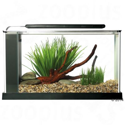 fluval-spec-5-nano-aquarium-wit-afmeting-l-52-x-b-19-x-h-295-cm