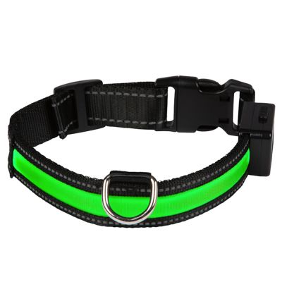Eyenimal LED-svítící obojek - zelený - Vel. M: 45 - 55 cm objem, Š 25 mm