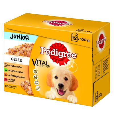 Pedigree Junior Pouch -lajitelma - 12 x 100 g