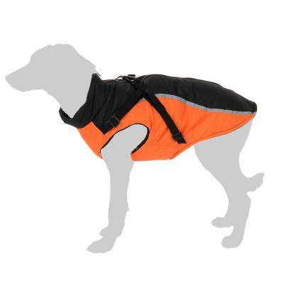 Toronto-koirantakki - XXL: selän pituus n. 45 cm