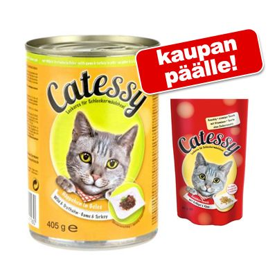 Catessy kastikkeella tai hyytelöllä 24 x 400 g + 65 g Catessy Snacks kaupan päälle! – lohi hyytelössä