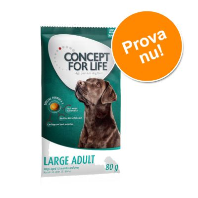 Concept for Life 80 g provpack till lågt prova-på-pris! - Medium Adult
