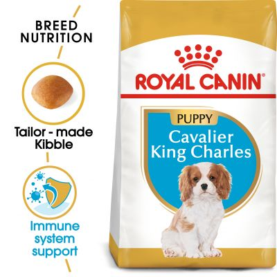 Royal Canin Breed Cavalier King Charles Puppy - 1,5 kg