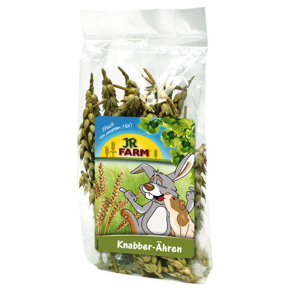 jr-farm-gabonakalasz-buza-100-g-kb-50-db