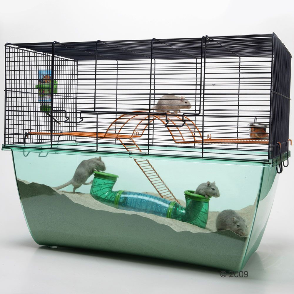 Starter Set For Small Pets - 3-piece set