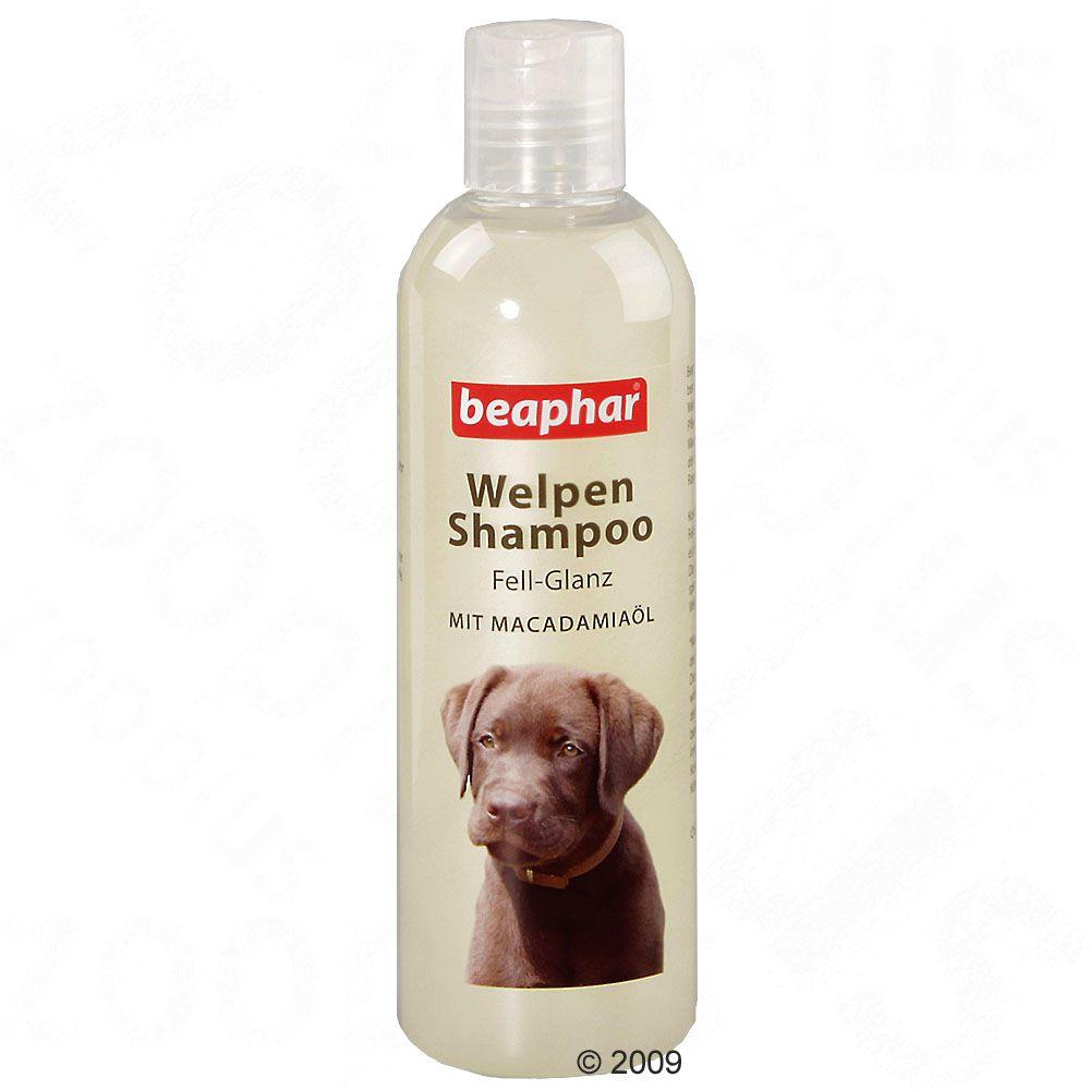 Chien Toilettage et hygiène Shampooing Shampooing pour chien Beaphar