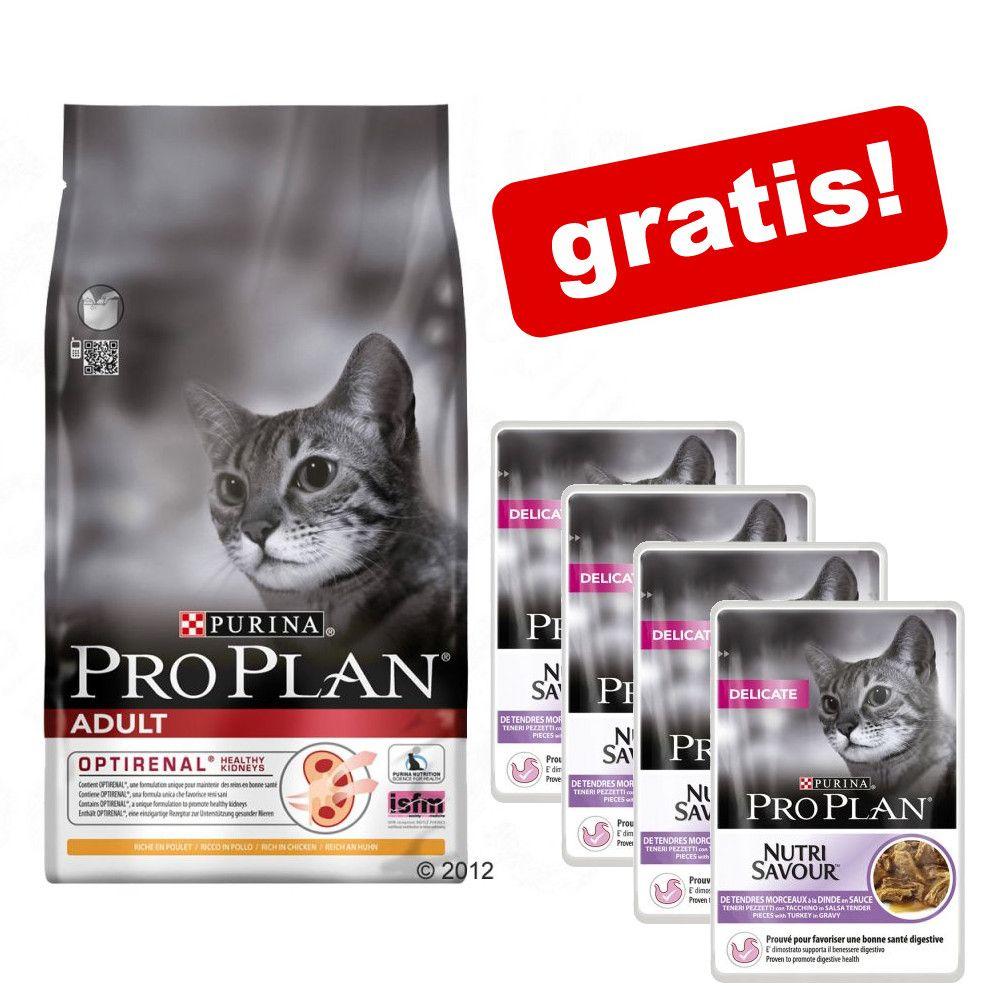 10 kg Pro Plan torrfoder för katt + 4 x 85 g Pro Plan Delicate Turkey på köpet! Adult Light Rich in Turkey
